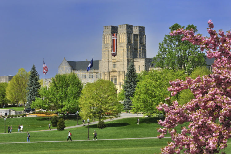 Virginia Tech Seeks Admission Deferrals to Balance Amazon Effect